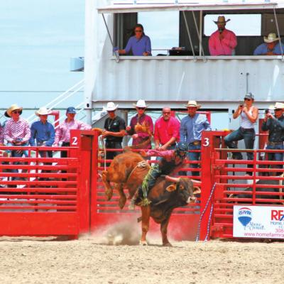 Local Cowboy Rides in Roughstock Rodeo