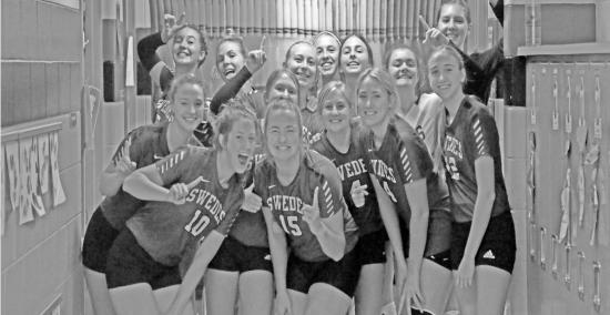 Swedes Volleyball